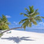 pexels asad photo maldives 1591373